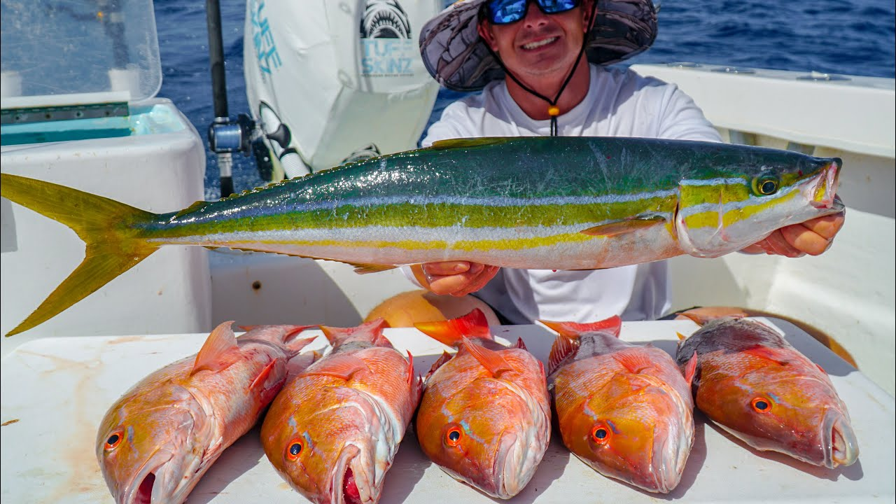GIANT Rainbow Runner & Snapper! Catch Clean Cook (Commercial Fishing)
