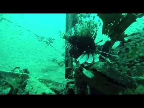 Dive and discover at Huma Island Resort & Spa