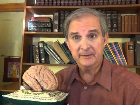 How the Brain Works: Sleep Disorders (Recurring Nightmares), Video 6 of 20