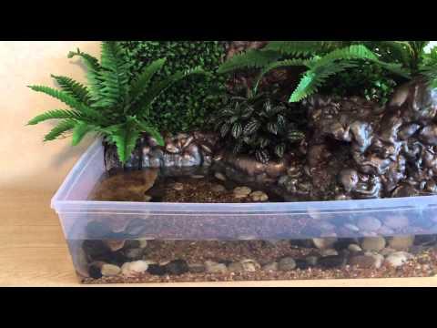 DIY Indoor Fish Fountain