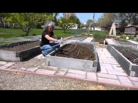 How to Make Cat Barrier Wire Covers for Your Garden Beds