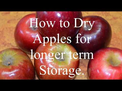 How to Dry Apples for Longer term storage