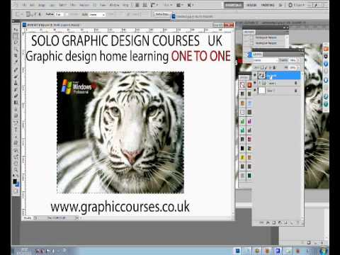 How to Design a Skateboard Graphic Online  UK