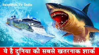 दुनिया की सबसे खतरनाक शार्क | Megalodon: The Monster Shark | Megalodon Sharks still lives