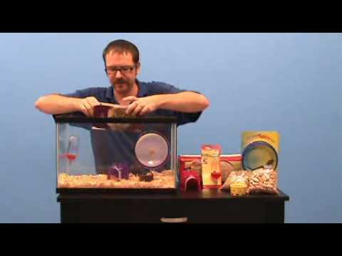 Pet World Hamster or Gerbil Cage Set-up How To video