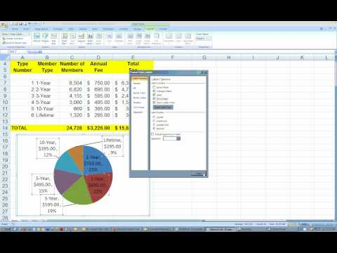 pie chart, excel 2007.wmv