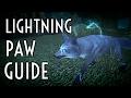WoW Guide - Lightning Paw Spirit Beast - Hunter Pet