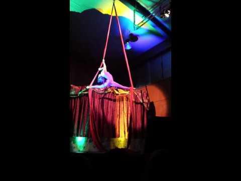 Aerial tissu silk Arts Week performance