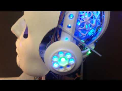 Robot Head: Mr. C.H.I.P.s