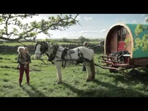 Life in the slow lane... a Gypsy caravan holiday in Cumbria
