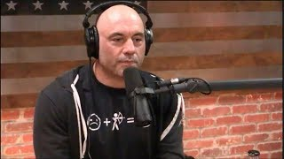 Joe Rogan - The Science of Hotness vs. Beauty