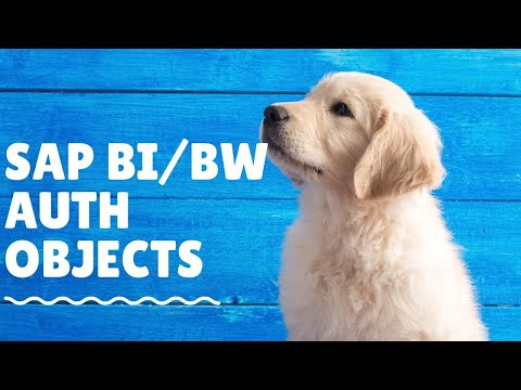 SAP BI Security Training What is BW/BI object a SAP Security Admin needs to know