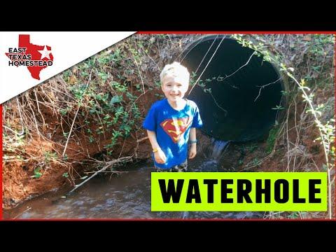 The Waterhole and Potting Plants on the Homestead | #EastTexasHomestead