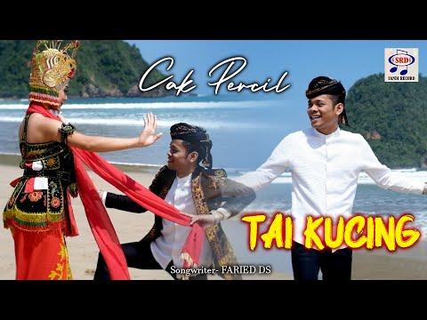 Download Lagu Cak Percil Tai Kucing Mp3