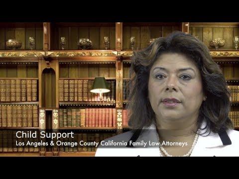 Orange County Child Support Lawyer - Family Attorney - Irvine Child Custody