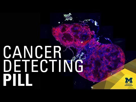 Pill for Better Diagnosis of Breast Cancer | Michigan Engineering