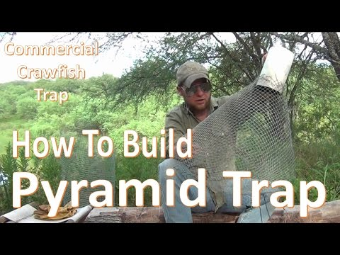Pyramid Trap -How to Build and Set-