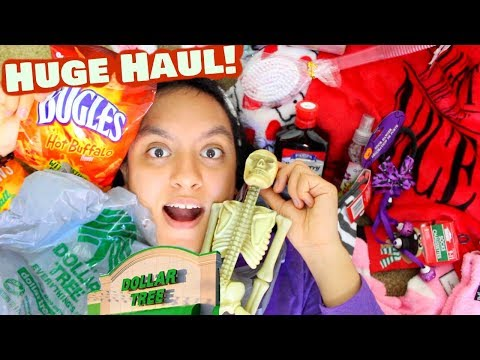 Huge Dollar Tree Haul! My First Time Ever!