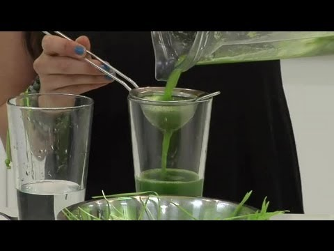 How to Extract Juice of Wheatgrass in a Blender : Healthy Drink Ideas