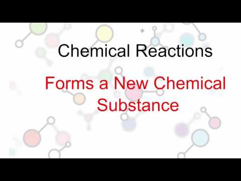 Chemical vs Physical Reactions