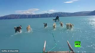 فيديو من غرينلاند يثير قلقا عالميا واسعا
