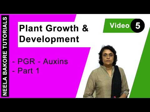 Plant Growth & Development - PGR - Auxins -  Part 1