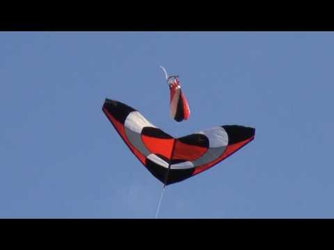 Weifang New Sky Kites