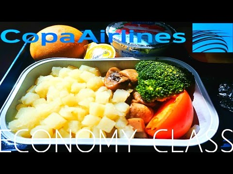 Copa Airlines ECONOMY CLASS Panama to Lima|Boeing 737-800