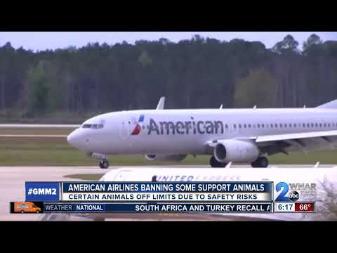 American Airlines no longer allowing certain emotional support animals on flights