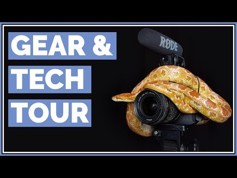 Everything I use to make Videos | Gear & Tech Tour