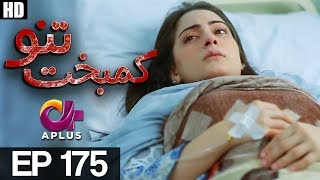 Kambakht Tanno - Episode 175 | A Plus ᴴᴰ Drama | Shabbir Jaan, Tanvir Jamal, Sadaf Ashaan