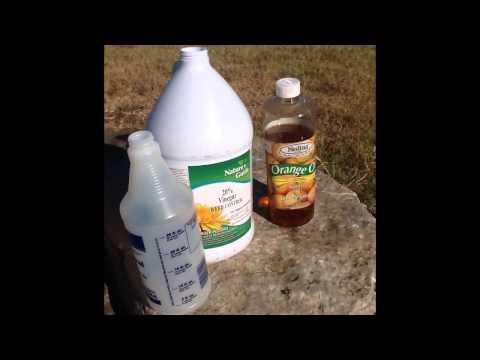 Organic WeedControl