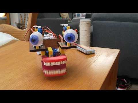 Speaking robot head with Animatronic Robot Eyes