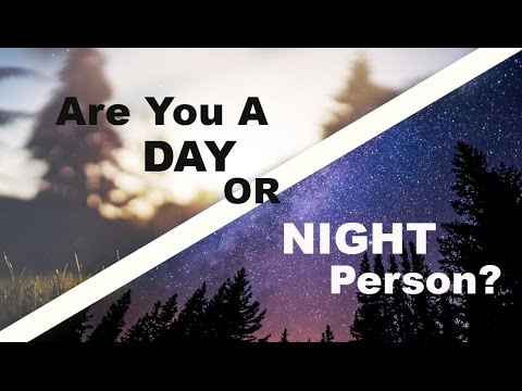 Are You A Day or Night Person? Find out when you are most productive