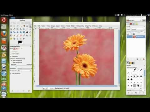 Gimp Tips: Foreground select Tool