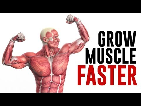How to Grow Muscle FASTER! Key Factors to Build Muscle Explained