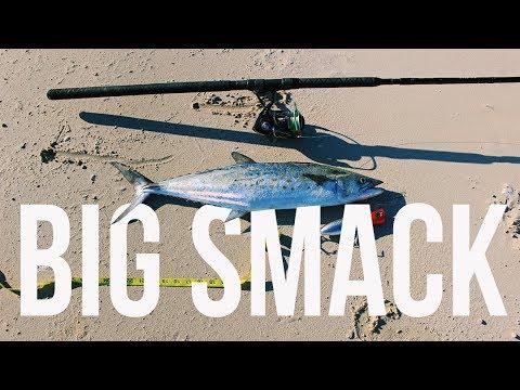 Surf fishing for Big Spanish Mackerel | Texas Surf Fishing | Galveston Surf Fishing for Mackerel