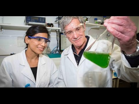 Fuel of the future: the secret to artificial photosynthesis