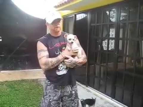 Buck Angel's  Mexican Dog Rescue 2