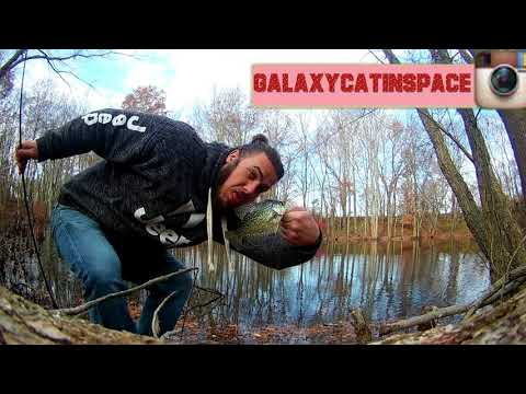 WinTeR ZoMbIE BlUe GiLL, Crappie fishing with a STRANGER