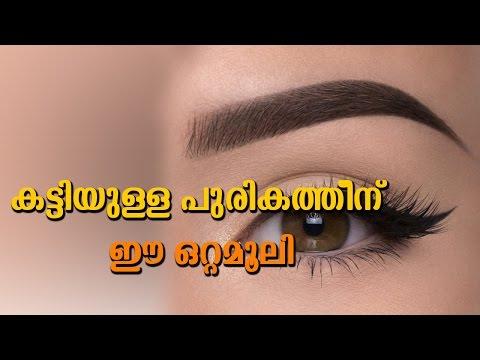 കട്ടിയുള്ള പുരികത്തിനു ഇ ഒറ്റമൂലി | How To Grow Eyebrows Faster And Thicker Naturally | Easy Tips