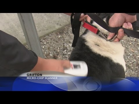 Grifton gets microchip scanner to aid in identifying impounded pets