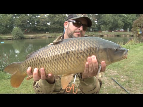 Fly Fishing for MONSTER CARP The Big Fish