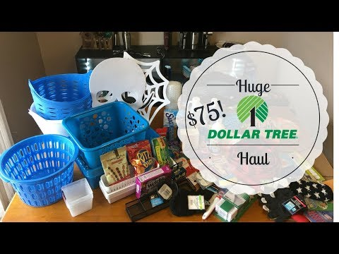 MY FIRST DOLLAR TREE HAUL   I spent $75?!