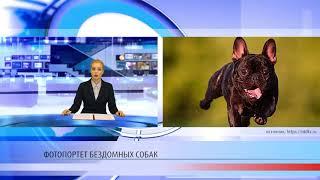 Мировые новости 26.06.2018