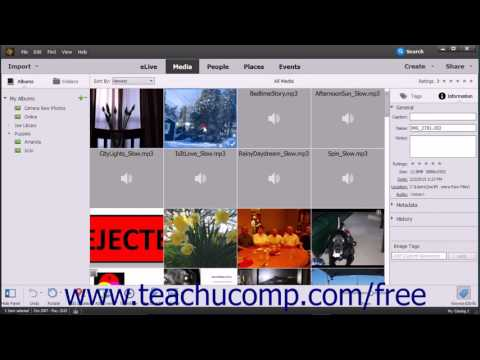 Photoshop Elements 15 Tutorial JPEG and Camara Raw Adobe Training