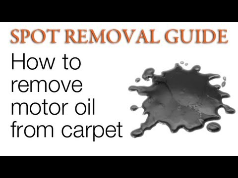 How to Get Oil Stains Out of Carpet - Motor Oil | Spot Removal Guide