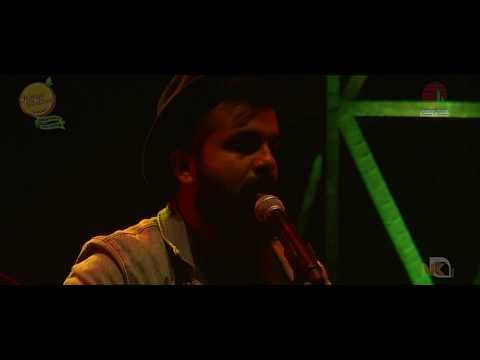 When Chai Met Toast | Firefly | Orange Festival Dambuk | Arunachal Pradesh