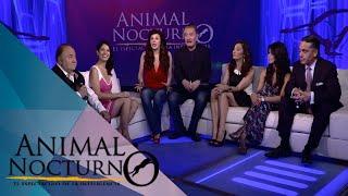 Animal nocturno:  Claustro de Sor Juana