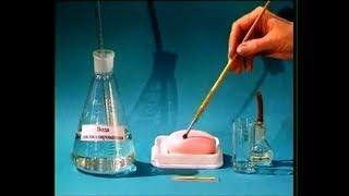 Download Опыты по химии. Гидролиз мыла Video